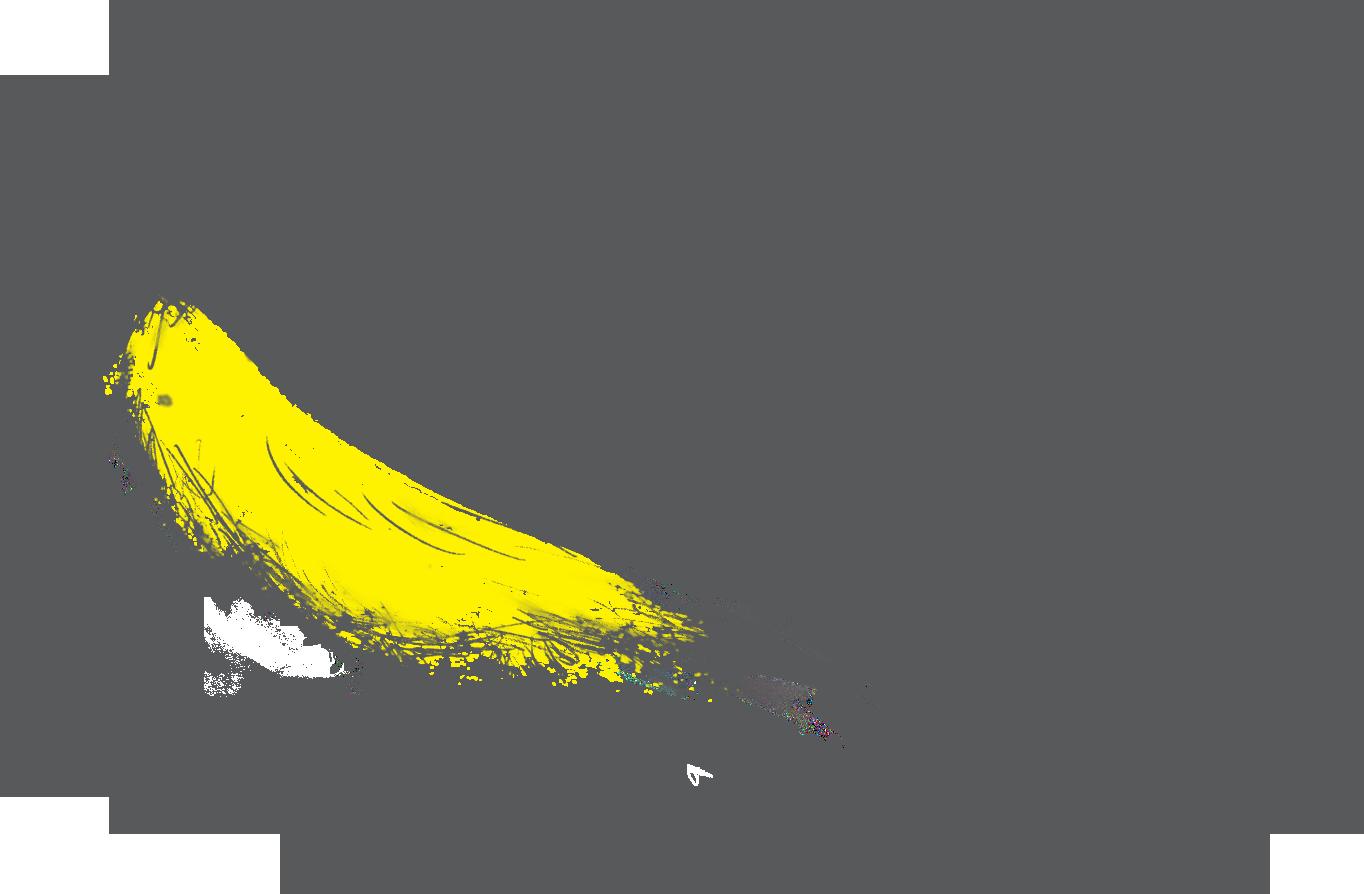 TGC BIRD Final Logo